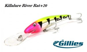 Gillies_Killalure_River_Rat_20