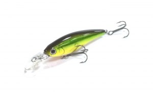 Daiwa_Steez_Shad_60F-SR_Green_Gold7