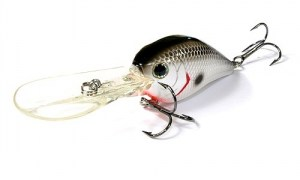 LUCKY_CRAFT_Flat_Mini_D6_077_Or_Tennessee_Shad