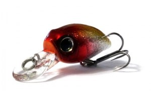 Anglers_Republic_Bug_Minnow_25MR_SCP444