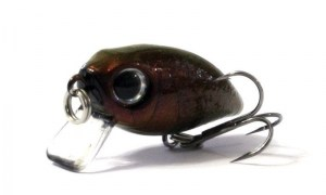 Anglers_Republic_Bug_Minnow_25SR_REYE5