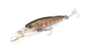 Daiwa_SC_Shiner_5SP_15_Brown_Trout6