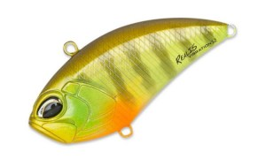 Duo_Realis_vibration_52_CCC3055
