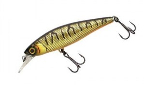 Jackall_Squad_Minnow_80SP_HL_Shining_tiger8