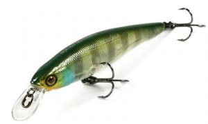 Jackall_Squad_Minnow_80SP_skeleton_gill